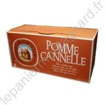 Infusion pomme-cannelle
